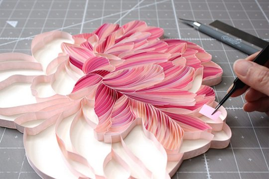 Floral Roll-ups