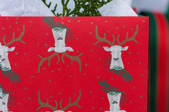 Holiday Season Packaging Design